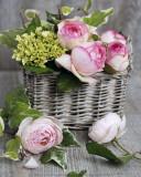 Roses Art by Catherine Beyler
