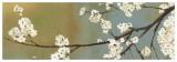 Kimono II Prints by Asia Jensen