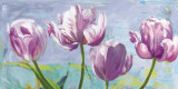 Lilac Tulips Posters by Robin Sadler