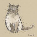 Kitty Tales IV Prints by Clare Ormerod
