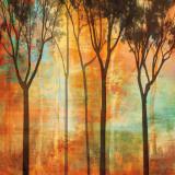 Magical Forest II Art par Chris Donovan