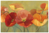 Summer Poppies Prints by Sandy Iafrate