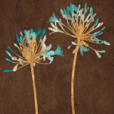 Teal Bloom II Prints by Erin Lange