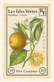 French Stamp II Prints by Maria Mendez