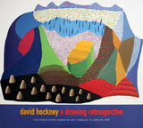 Sinked Posters by David Hockney