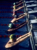 Male Swimmers at the Start of a Race Photographic Print