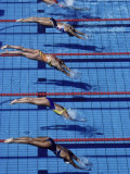 Female Swimmers at the Start of a Race Photographic Print
