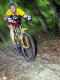 Recreational Mountain Biker Riding on the Trails Photographic Print