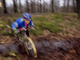 Young Male Recreational Mountain Biker Riding in the Forest Photographic Print