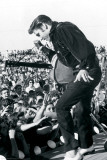 Elvis Presley - Tupelo Prints