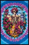 Grateful Dead - 30 Yr.Anniversary Posters