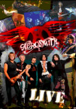 Aerosmith Prints