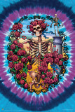 Grateful Dead 30 YR.Anniv Poster