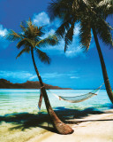 Tropical Beach Posters