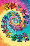 Grateful Dead Spiral Bear Posters