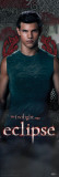 Twilight - Eclipse (Jacob) Posters