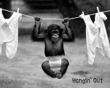 Hangin&#39; Out Poster