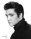 Elvis Presley - Portrait Poster