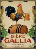 Biere Gallia Plaque en métal