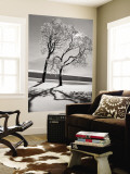 Trees in the Snow Wall Mural by Alfred Eisenstaedt