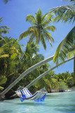 Hammock - Tropical Beach Kunstdrucke