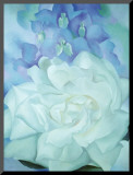 White Rose with Larkspur Kunstdruk geperst op hout van Georgia O'Keeffe