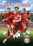 Liverpool - Players 10/11 Affiches