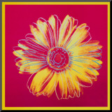 Daisy, c.1982 (Fuschia and Yellow) Mounted Print by Andy Warhol