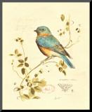 Gilded Songbird IV Mounted Print by Chad Barrett