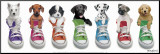 Sneaker Pup Line-Up Mounted Print by Keith Kimberlin