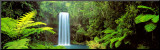 Millaa Millaa Falls, Queensland, Australia Mounted Print by Peter Lik