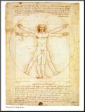 Vitruvian Man, c.1492 Mounted Print by  Leonardo da Vinci