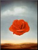 Salvador Dalí - Meditativní růže, c. 1958 Reprodukce aplikovaná na dřevěnou desku