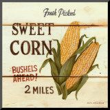 Fresh Picked Sweet Corn Mounted Print by David Carter Brown