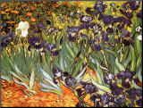 Irises, Saint-Remy, c.1889 Mounted Print by Vincent van Gogh