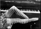 Pieds de piano Affiche montée sur bois par Ben Christopher