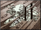 Charco Lámina montada en tabla por M. C. Escher