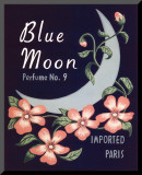 Blue Moon Mounted Print by Louise Max