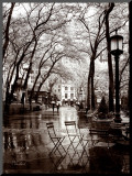 April Showers Mounted Print by Toby Vandenack