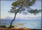Antibes, boom aan zee Kunst op hout van Claude Monet