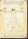 O Homem Vitruviano, c.1492 Impressão em tela esticada por  Leonardo da Vinci
