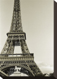 Eiffel Tower from the River Seine Stretched Canvas Print by Christian Peacock