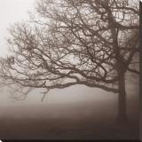 Silence Leinwand von Erin Clark