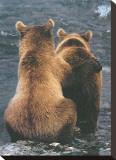 Dos cachorros de oso Reproducción en lienzo de la lámina por Art Wolfe