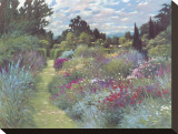 May Garden Stretched Canvas Print by Allan Myndzak