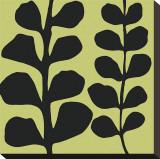 Black Fern on Green Impressão em tela esticada por Denise Duplock