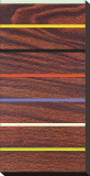 Woodgrain and Stripe Stretched Canvas Print by Dan Bleier