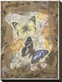 Honeycomb Butterflies Stretched Canvas Print by David Hewitt