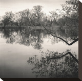 Rideau River, Study, no. 1 Stretched Canvas Print by Andrew Ren