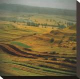 Transylvania IV Stretched Canvas Print by Crina Prida
